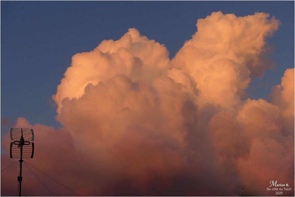 BLOG-P1030477-antenne et ciel rose