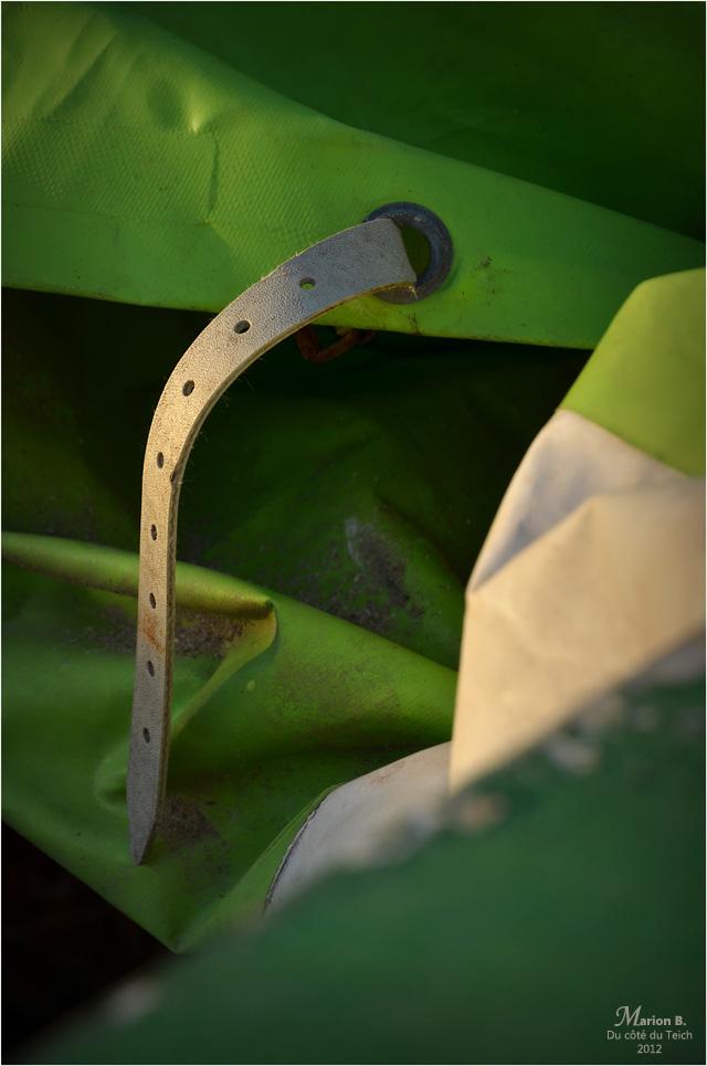 BLOG-DSC_17863-sangle et oeillet bâche verte pinassotte