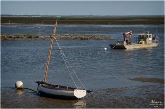 BLOG-DSC_47451-White pearl et File rivages le Four marée montante