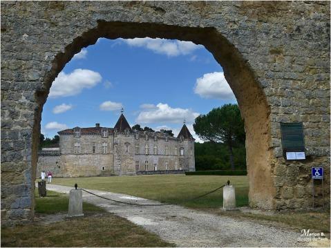 BLOG-P1040367-château Cazeneuve 33