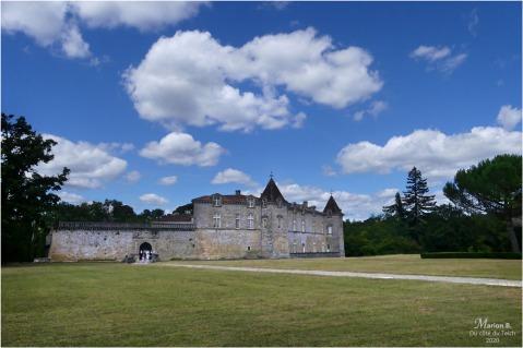BLOG-P1040370-château Cazeneuve 33