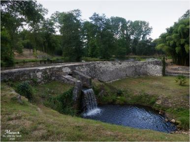 BLOG-P1040381-parc château Cazeneuve 33