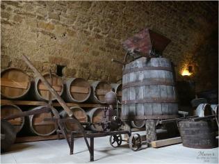BLOG-P1040419-château Cazeneuve 33