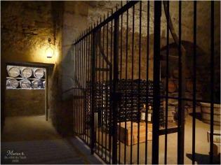 BLOG-P1040424-château Cazeneuve 33