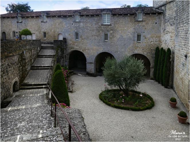 BLOG-P1040425-château Cazeneuve 33