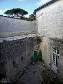 BLOG-P1040439-château Cazeneuve 33