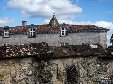 BLOG-P1040442-château Cazeneuve 33