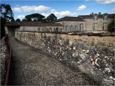 BLOG-P1040444-château Cazeneuve 33