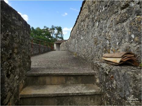 BLOG-P1040445-château Cazeneuve 33