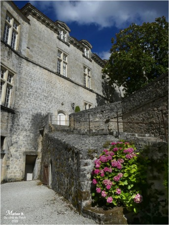 BLOG-P1040449-château Cazeneuve 33