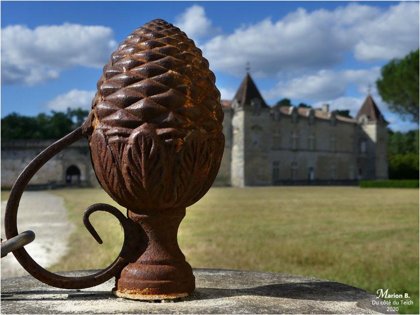 BLOG-P1040491-château Cazeneuve 33