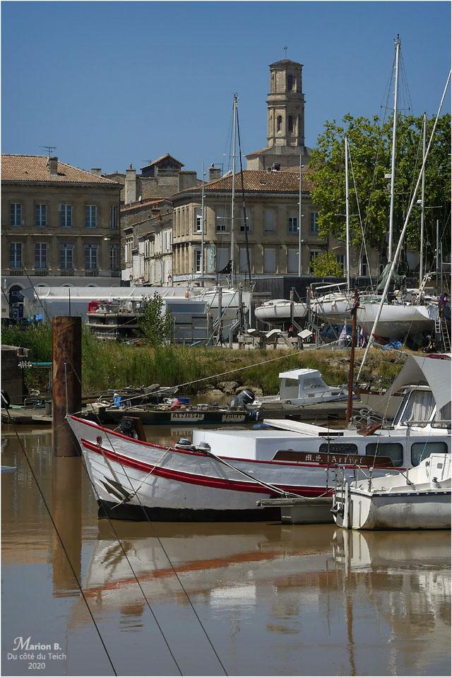 BLOG-P1040654-port Pauillac