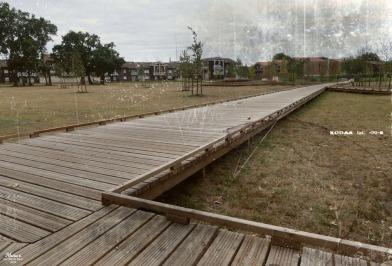 BLOG-P1040627-aménagements entre ville et port le Teich PA06